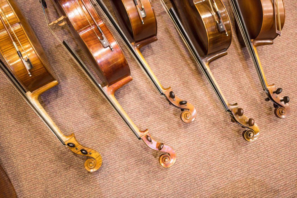 cello info
