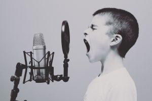 voice info